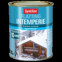 Vernice Intemperie 0.75L